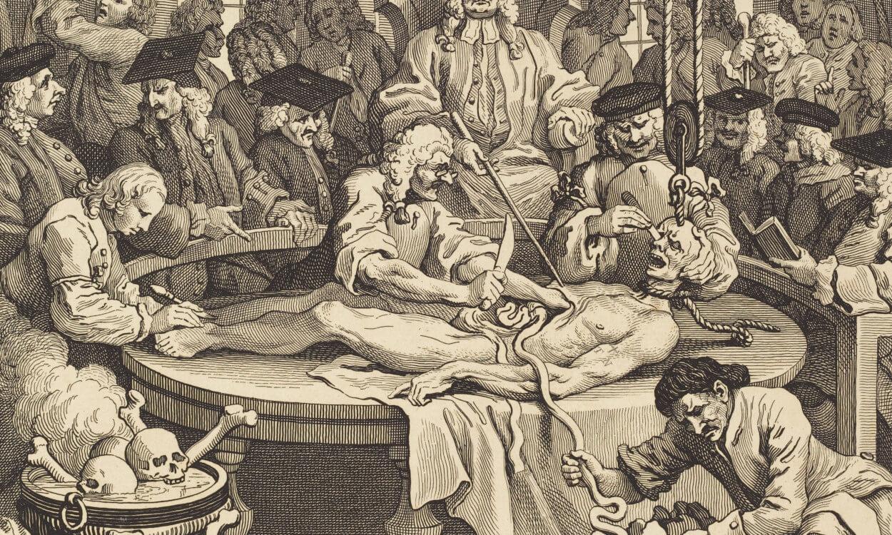 Medical Cannibalism